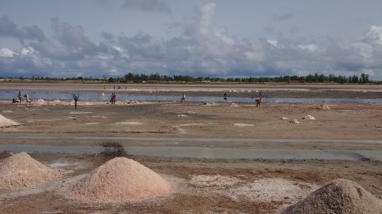 senegal baobab lago rosa