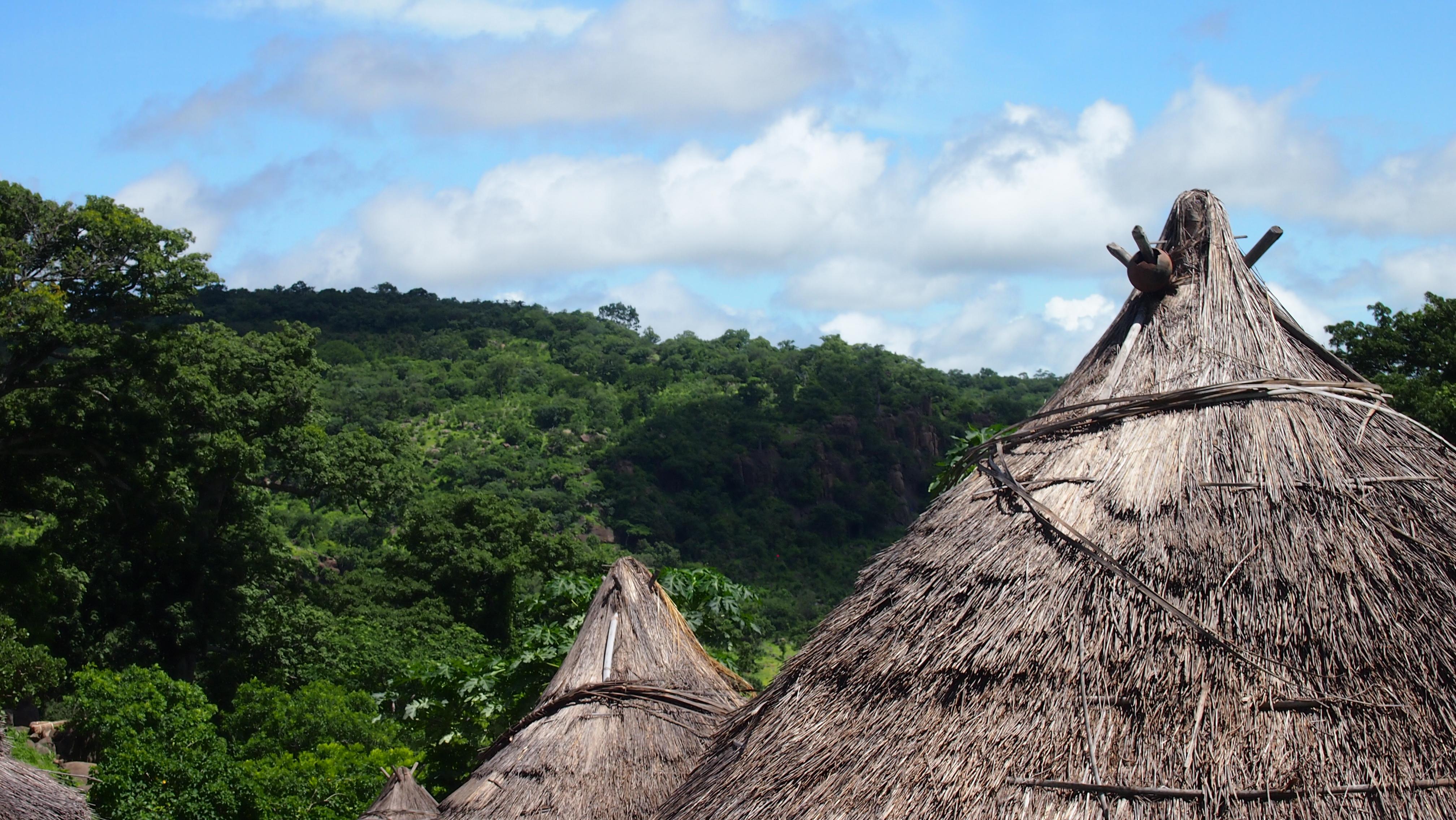senegal baobab aldeas bassari