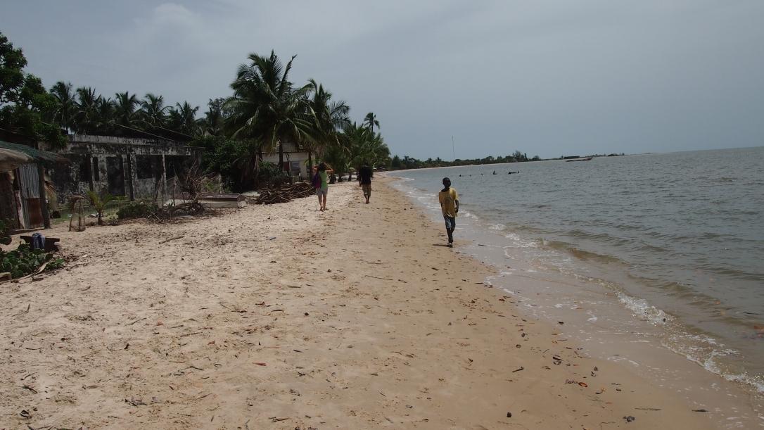 senegal baobab isla carabane