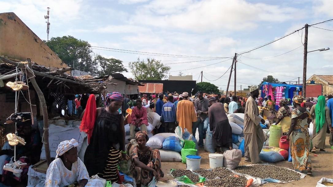 Senegal solidario1